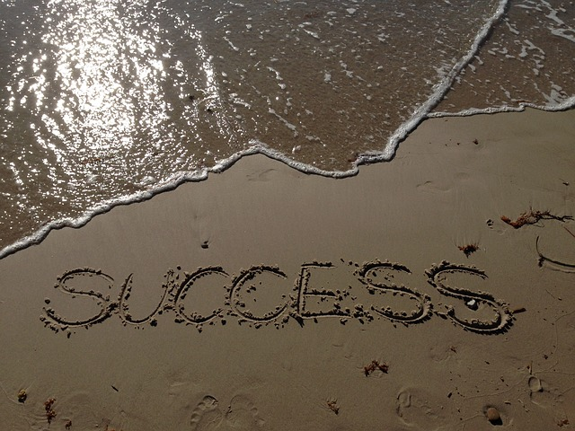 succesfactoren bol.com