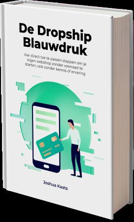 gratis e-book dropshipping